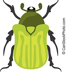 Beetle flat insect bug in cartoon style - Beetle flat insect...