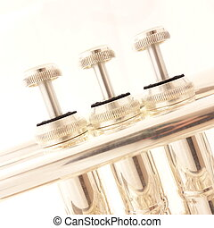 Cornet Valves - Silver cornet valves against a white...