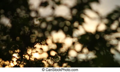 abstract background of light spots bokeh
