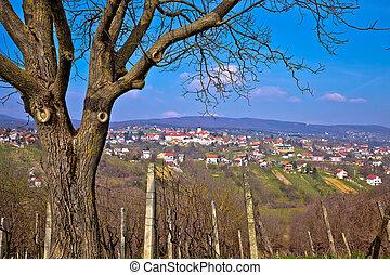 Town of Sveti Ivan Zelina in Prigorje, Croatia