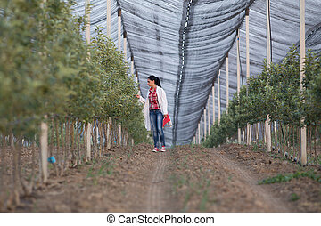 Agronomist in orchard - Young woman agronomist in white coat...