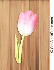 Pink tulip on wood