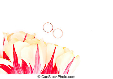 Tulips and two rings