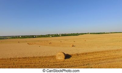 Bales Of Hales On Harvested Wheat Field - AERIAL VIEW...
