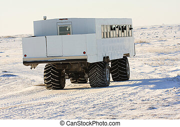 Arctic tundra buggy filled with photographers in search of...