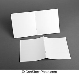 Blank catalog, brochure, magazines, book mock up. - Blank...