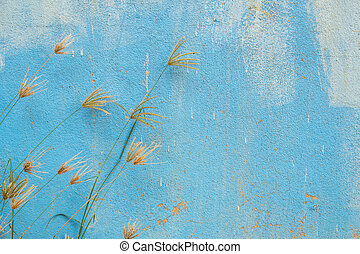 Grass flower with grunge background - Grass flower with...