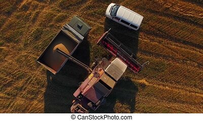 Agricultural Machinery Working On Filed At Harvest - AERIAL...