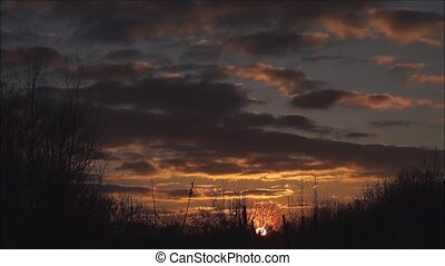 beautiful sunset, time-lapse Sunset with clouds over thicket