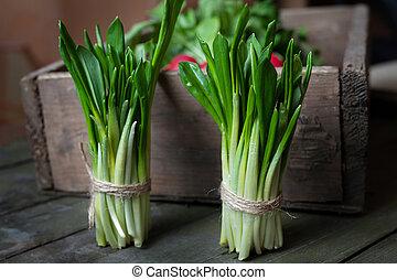 Crop of fresh ramson leaves spring natural herbs rustic...