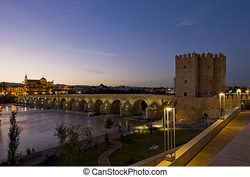 Roman bridge with Calahorra tower at night, Cordoba,...