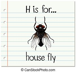 Flashcard letter H is for house fly illustration