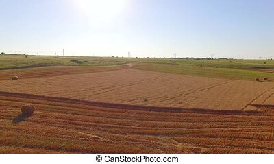Hale Bales Lying On Fresh Cut Wheat Field - AERIAL VIEW This...