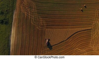 Harvesting Machine Working On Buckwheat Field - AERIAL VIEW...