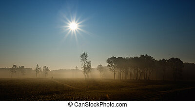 Foggy landscape in plains - Panoramic view of meadow and...