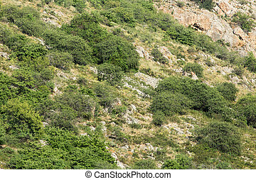 rocky slopes in the mountains