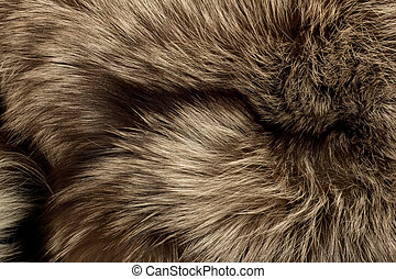 Polar Fox fur Useful as texture or background