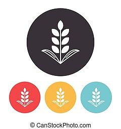 Kornsorter, ikon