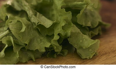 Macro footage of wet lettuce leaves spinning around on a...