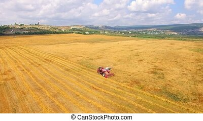 Working Harvesting Combine In The Field Of Wheat - AERIAL...