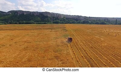 Farm Combine Harvesting Wheat In The Field - AERIAL VIEW...