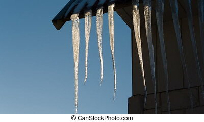 White icicles hanging from the roof and melting Video full...