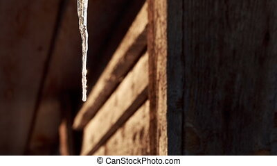 One icicle on a background of a wooden house. Video full hd.