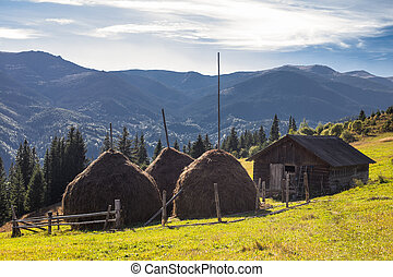 Cute wooden house and reaps on mountains background - Cute...