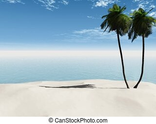 Palmtrees on a sandy beach. - A 15 second long animation of...