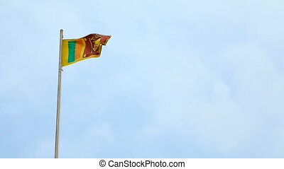 The flag of Sri Lanka includes a gold lion, holding a...