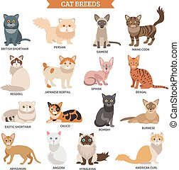 Cat breed set - Cat breed flat icons set with cute animal...