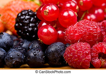 Wild fruits redcurrant, blackberry, raspberry and blueberry...