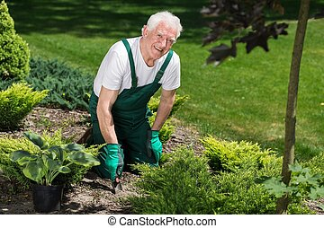 Happy gardener at work - Smiling male gardener is planting...