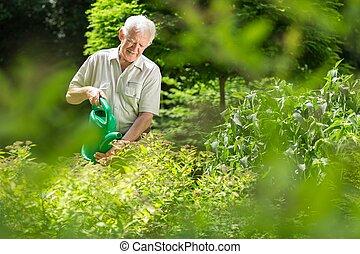 Gardener watering plants - Gardener is watering his plants...
