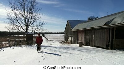 Farmer walking on a farm in winter - Farmer walking on his...