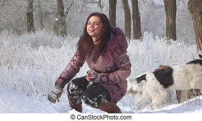 Woman photografing dog - In snowy winter forest girl...