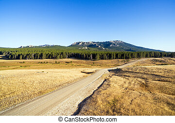 Bighorn Mountains and Dirt Road - Aerial view of a dirt road...