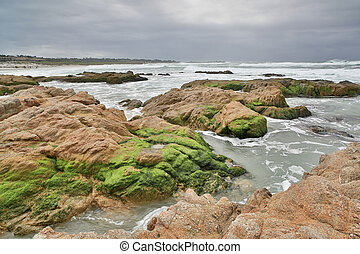 Asilomar State Beach, Monterey - Rocky shoreline of the...