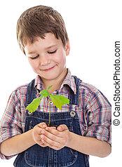 Boy with oak sapling in hands