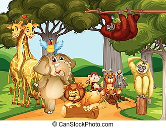 Wild animals living in the forest