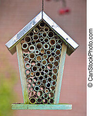 Close up insect house