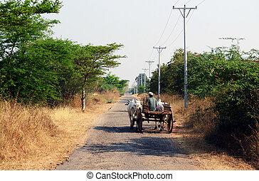 Rual farmer on road - Farmen in rual Bagan on the way home...