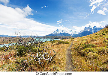 torres del paine - beautiful view from hike to mirador...