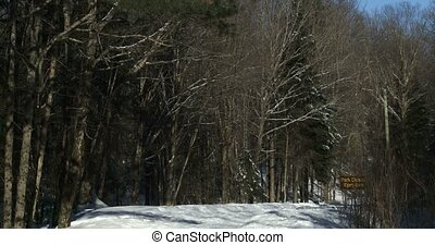 Snowy trail in Algonquin Park - Snowy and icy trail in...