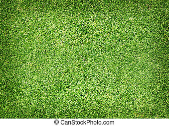Golf Courses green lawn pattern textured background