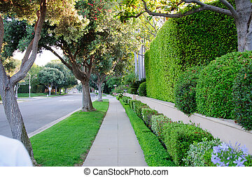 Sidewalk on beverly hillls in California USA