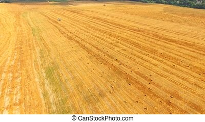 Golden Hay Bales On Harvested Field - AERIAL VIEW This is a...