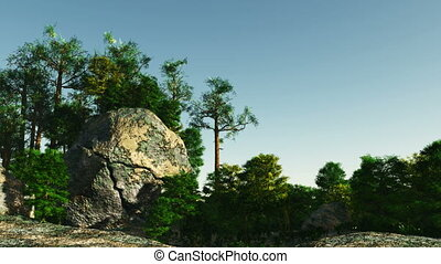 Forest on granite rocks and canyons