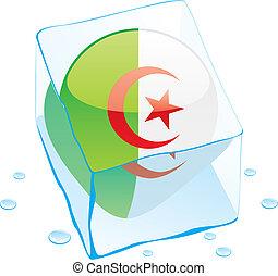 algeria button flag frozen in ice