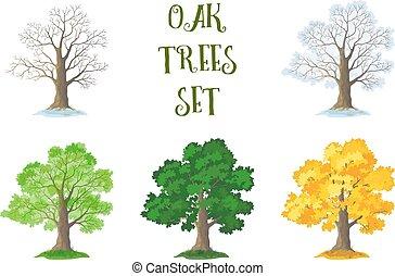 Oak Trees Set, Seasons - Set of Oak Trees and Grass,...